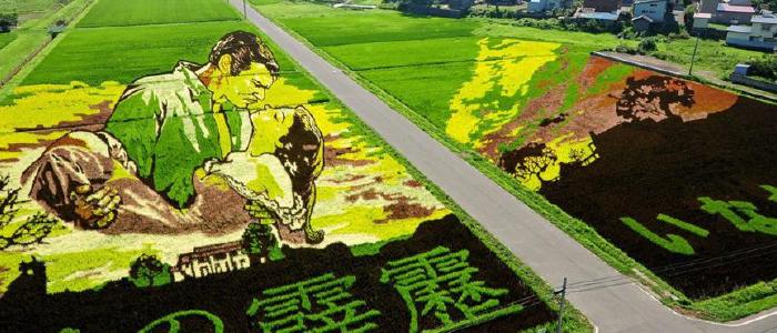 Sztuka pól ryżowych.